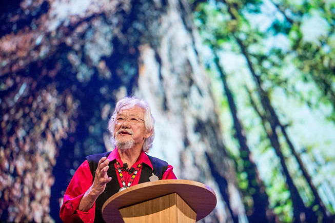 David Suzuki talking in front of a podium with a pair of glasses and grey hair and beard, with a background of trees