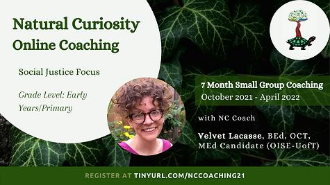 Online Coaching - Velvet.png