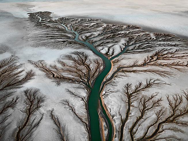 Colorado River Delta #2 by Edward burtyn