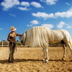 caballocampo.jpg