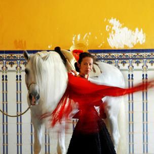 caballobaile.jpg