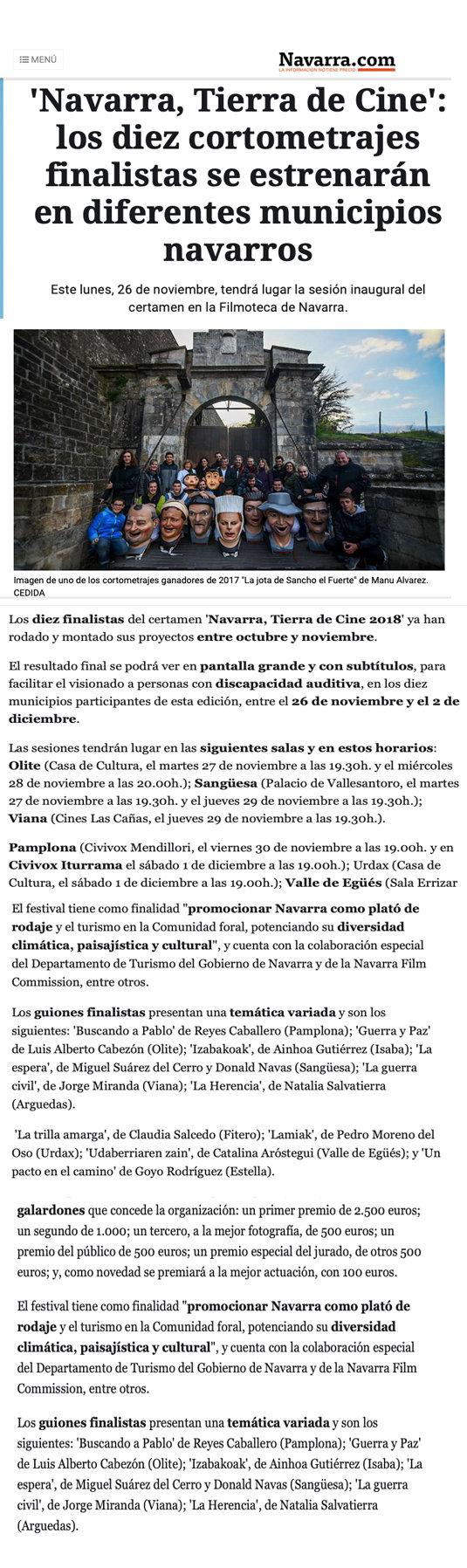 DIARIO DE NAVARRA.jpg