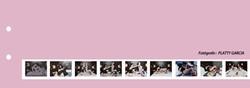 60-catalogo-PLATTY-1.jpg