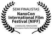 SEMI FINALISTAS - NanoCon International