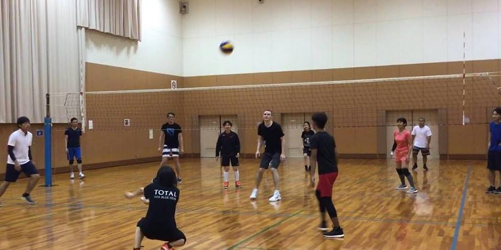 Volleyball: Shin Osaka