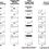 Thumbnail: versatile 4C16S-HOP-D