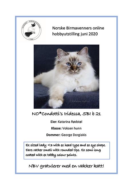 Skjermbilde 2020-08-13 kl. 10.51.03.png