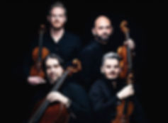QUARTETTO DI CREMONA Violine.jpg