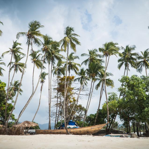 Tha Palms