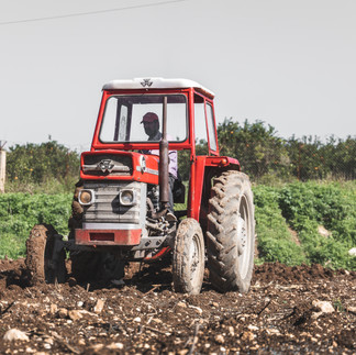 The Red Tractor, Tyre City, Lebanon