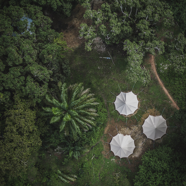 Tasso, Sierra Leone