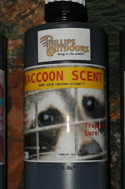 Raccoon Urine