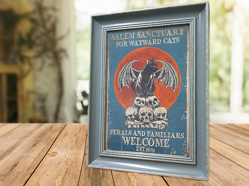 Salem Sanctuary for Wayward Cats Framed Print