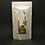 Thumbnail: Bancha 番茶