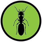 termite-icon1.png