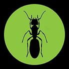 termite-icon1.png
