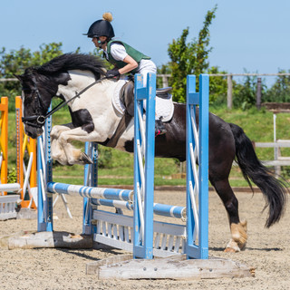 Unaffiliated Showjumping 12th June