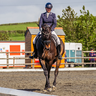 Dressage 15th May