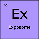 66 Exposome.png