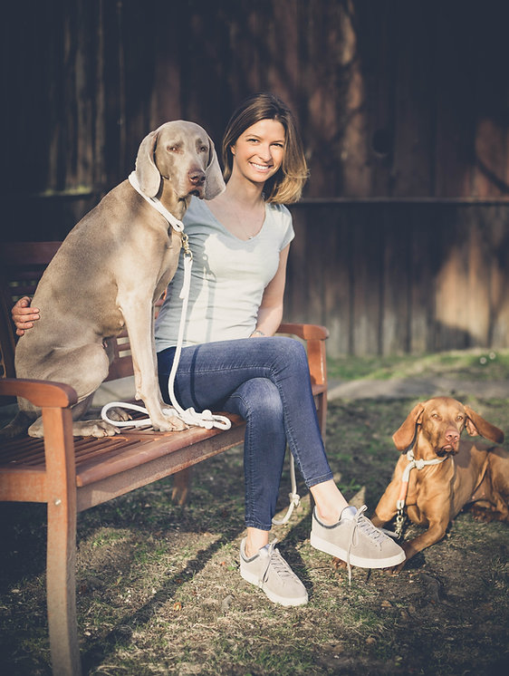 Hundetrainer und Hunde