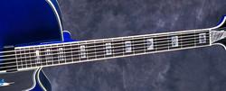 Blue Marlin Fingerboard