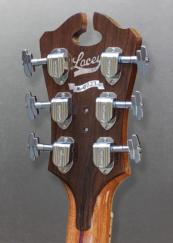 Delahaye Headstock Back