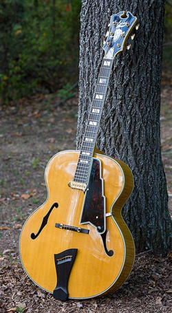 Imperial 18 inch Non-Cutaway Archtop