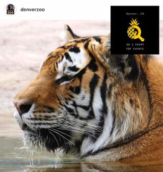 Denver Zoo - Best Zoo