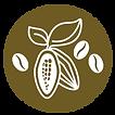 logo paisaje café y cacao de chiapas y tabasco granos de café y semilla de cacao