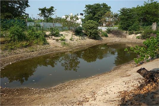 2.4_proyecto_cuenca_baja_ppd_mexico.jpg