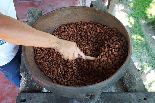 1.4_proyecto_cafe_cacao_ppd_mexico.jpg