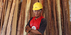 jóven del sureste con casco y lentes de seguridad frente a tablones de madera