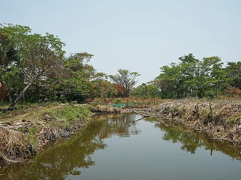 paisaje cuenca baja acuacultura sustentable calax sabancuy