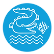 logo paisaje costero del golfo de mexico y del caribe cocodrilo