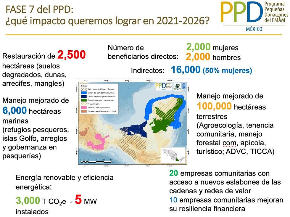 fase_7_ppd_mexico.jpeg