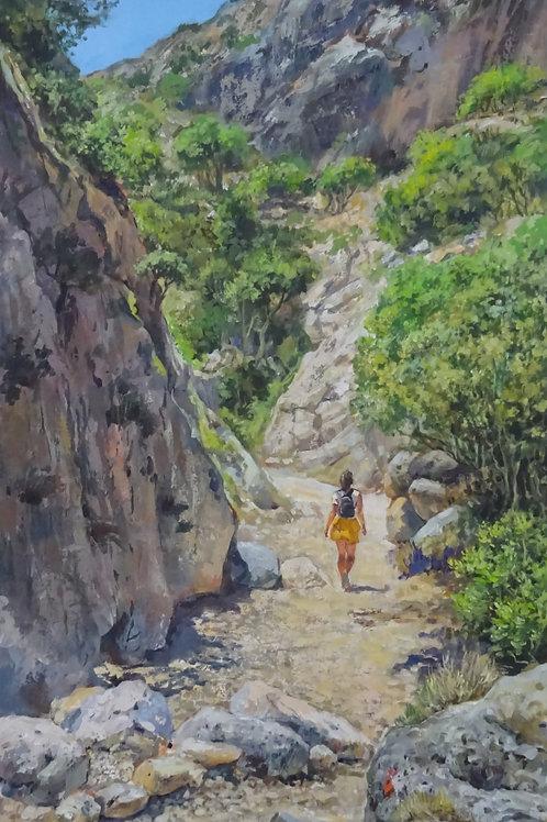 Cretan gorge