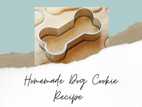 Homemade Dog Cookie Recipe