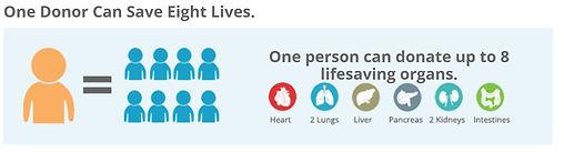Organ donation stats2.JPG