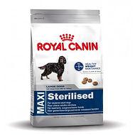 royal-canin-maxi-sterilised-alimentation