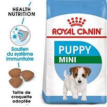 royal-canin-mini-puppy-alimentation.jpg