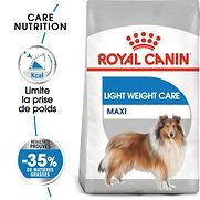 royal-canin-chien-maxi-light.jpg
