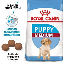 royal-canin-chien-medium-junior.jpg