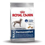 royal-canin-maxi-dermacomfort-alimentati