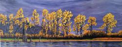 Painted poplars