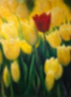 'Colour of Spring'   Acrylic  30 x 40