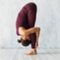 Radja-Yoga_edited.jpg