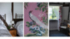 rose room.jpg