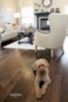 LR Update 219-living room chewy wm.jpg