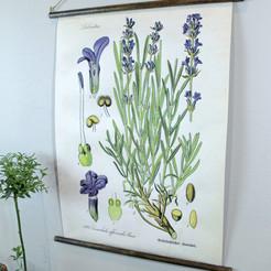 ~DIY Lavender Wall Art~