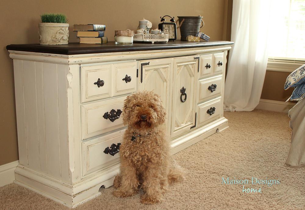 Chewy & the dresser.jpg